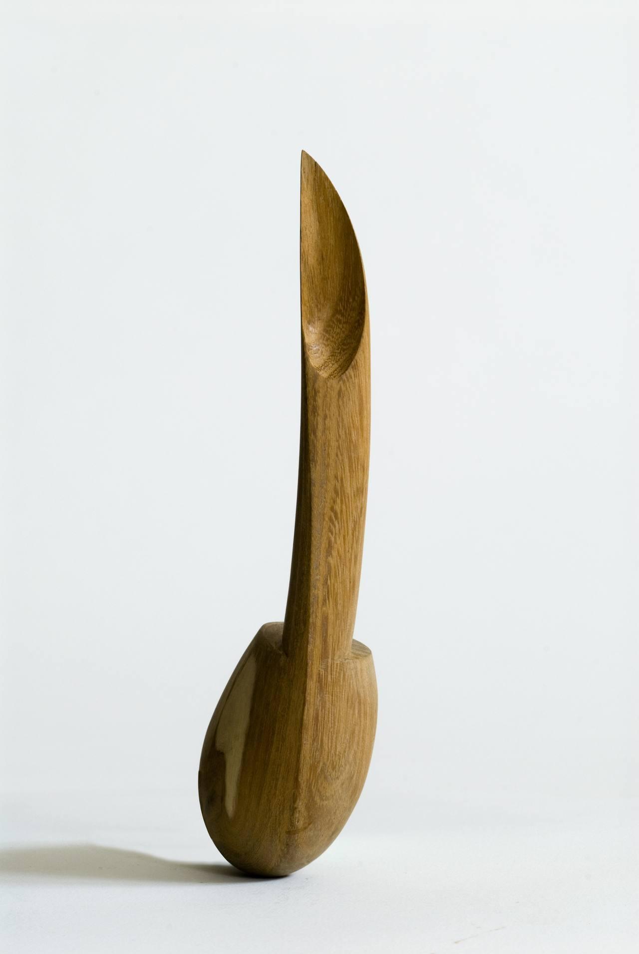 'EVA'S APPLE CORER' / 1990 / study Design Academy Eindhoven